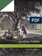 Troubling Freedom by Natasha Lightfoot
