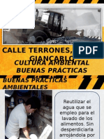 Calle Terrones, Oscar Giancarlo - Buenas Practicas Ambientales