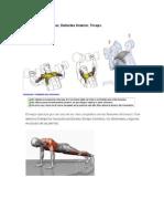 ejercicios musculo