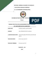 Informe Ppp Ulises Para Corregir