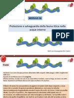 Modulo 16.pdf