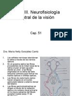 neurofisiologia del ojo