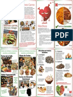 groupa nfs333 brochurespanish