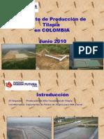 proyecto tilapia colombia INVIFU.pptx