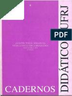 ERMELINDA PAZ - Modalismo Mus Brasileira