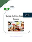 03_manual Introduccion Al Seguro 2013 Ince-2