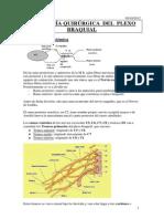 Patología Del Plexo Braquial
