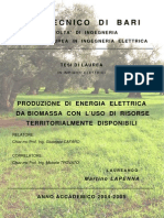 Produzione Di Energia Elettrica Da Biomassa