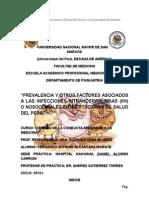 """""""PREVALENCIA Y OTROS FACTORES ASOCIADOS A LAS INFECCIONES INTRAHOSPITALARIAS (IIH) O NOSOCOMIALES EN INSTITUCIONES DE SALUD DEL PERÚ"""""""