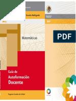 85697664-guia-de-autoformacion-docente-matematicas-programa-educativo-para-escuelas-multigrado.pdf