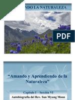 ABRAZANDO LA NATURALEZA - Capitulo I - Sección VI
