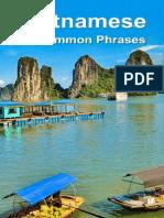 Vietnamese 50 Common Phrases