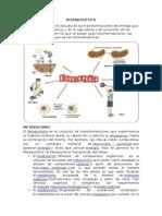 BIOENERGÉTICA-AVANCE.docx