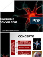 Sindromeconvulsivo 111205112125 Phpapp02 (1)