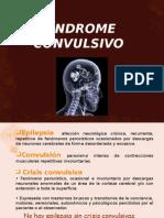 sndromeconvulsivo-100728103250-phpapp02