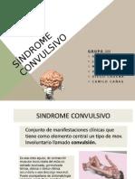 sndromeconvulsivo-121101231540-phpapp01