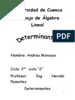 Trabajo de Algebra Determinantes 1