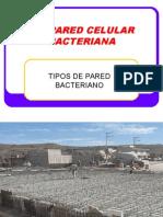 S6.- LA  PARED CELULAR BACTERIANA.ppt