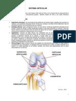 Anatomía - Sistema Articular