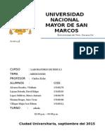 Laboratorio Física General Informe 01 UNMSM