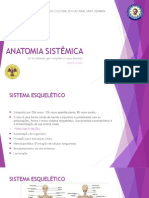 Anatomia Sistêmica - Yasmin Souza