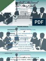 Informe Pericial de La Empresa - El Tejedor