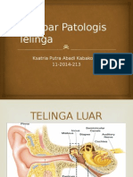 Gambar Patologis Telinga