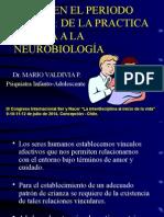Apego en El Periodo Primal de La Practica Clinica a La Neurobiología Mario Valdivia Psiquiatra Infanto Adolescente