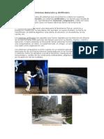 Sistemas Naturales y Artificiales