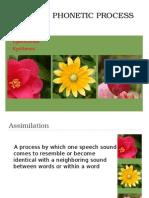 Phonetic Processes