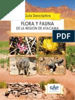 Flora y Fauna de La Region de Atacama