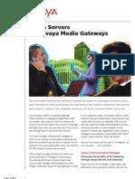 Avaya Servers and Avaya Media Gateways