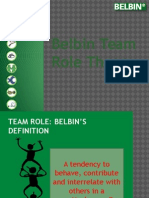 Team Roles Theory