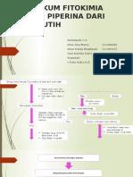 praktikum fitokimia