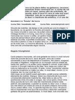 Документ Microsoft Wcbvord