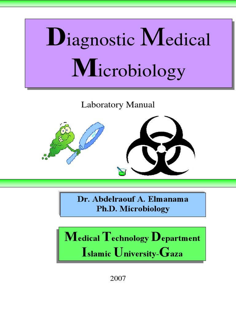 1396385835.9471Diagnostic Medical Microbiology Manual 2007   Streptococcus    Bacteria