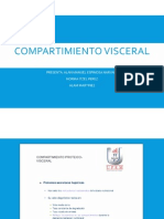 Compartimiento VISCERAL 2