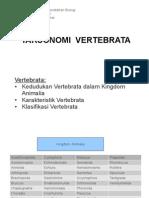 2-2-vertebrata (1)