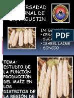 Produccion de higo en Arequipa
