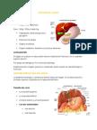 Anatomia del Higado y Estudio de La Funcion Hepatica