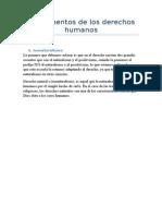 Fundamentos de Los Derechos Humanos