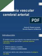 Anatomia Vascular Cerebral Arterial