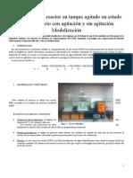 Informe CSTR