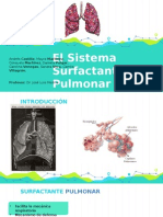 El Sistema Surfactante Pulmonar