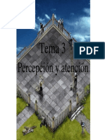 Tema3_1_1Percepcin y Atencin. Intr.