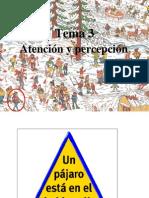 Tema3_2 Atenci%F3n y Percepci%F3n