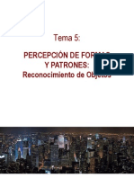 Tema5-PercepcionobjetosFinal