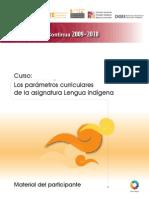 CUADERNO DE TRABAJO DE PARAMETROS CURRICULARES.pdf
