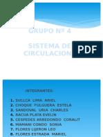 4 Sistema de Circulacion