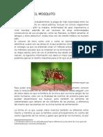 dengue en guerrero